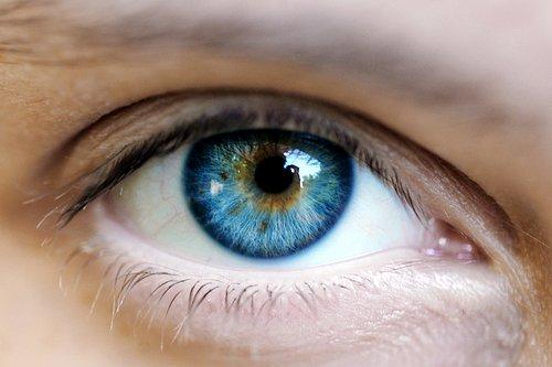 Göz (İnsan)