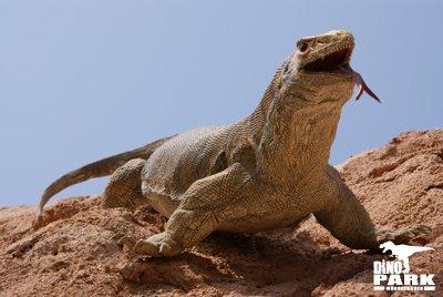 Hylonomus (Birebir Maket), Münih Dinozor Parkı