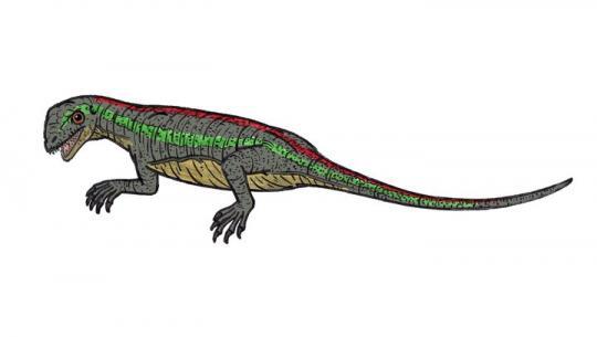 Paleothyris (Çizim Rekonstrüksiyon)