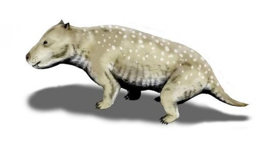 Exaeretodon