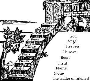 Büyük Varlık Zinciri (Aristotales)