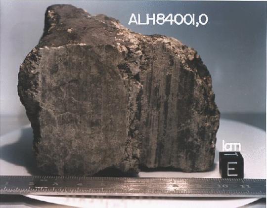 ALH84001 Meteoroidi
