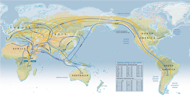 İnsan türünün Afrika'daki evriminden sonraki göç yolları