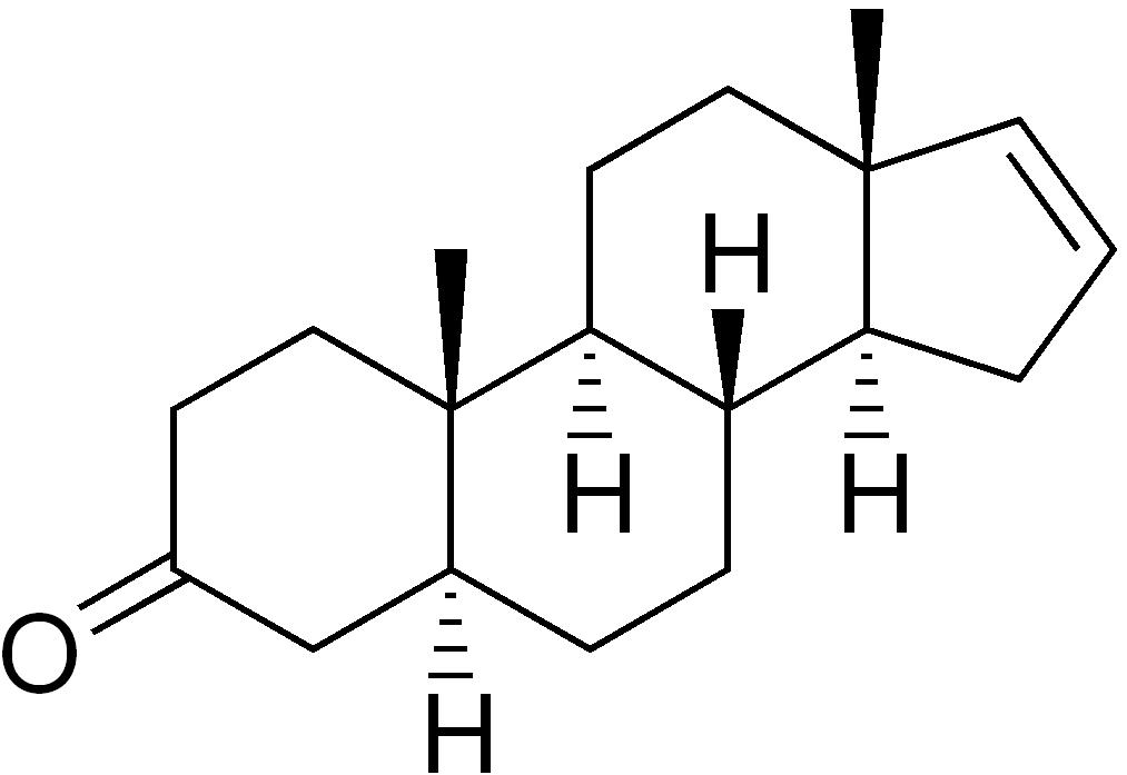 Androstenon molekülü...