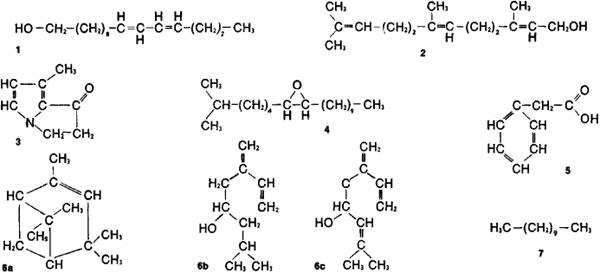 Kopulin molekülleri...