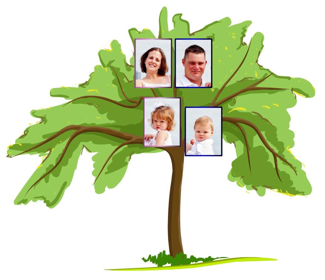 Evrim Ağacı'nda, kendinizden başlayıp 1 nesil geriye giderseniz, anne ve babanıza ulaşırsınız. Bu noktada, size en yakın olan canlı ile, yani kardeşiniz ile soy hatlarınız birleşir. Diğer yazılarımızdaki evrim anlatımlarımızdan hatırlayacak olursanız (ve az sonra da göreceğiniz gibi), bu ufacık nesil sayısında bile soy hatları birleşmektedir. Elbette, 1 nesil içerisinde farklı türlerin soy hatlarının birleşmesini beklemeyiz. Ancak en basitinden, siz ile kardeşlerinizin soy hatları, yaşamış son ortak atanızda, yani anne ve babanızda birleşecektir. Dolayısıyla,