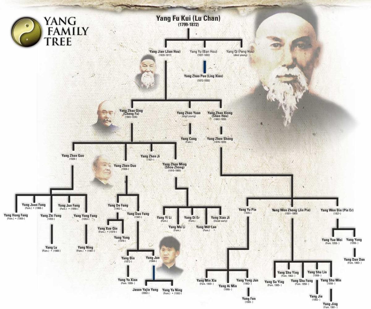 Burada çok daha uzun bir soy hattı ele alınmaktadır. Örneğin, en altta, sol tarafa doğru olan Yang Ya Ning isimli şahıs olduğumuzu varsayalım. Geriye doğru nesilleri takip edecek olursanız, 6 nesil sonunda en tepedeki Yang Fu Kui şahsına ulaşırsınız. Dikkat edilmesi gereken şudur: bu soy ağacında yer alan her bir bireyin yaşamış son ortak atası bu en tepedeki kişidir. İşte