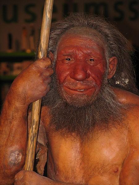 Almanya'daki Neanterdal Müzesi'nden Bir Neandertal Canlandırma Çalışması.