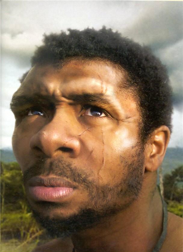 """Günümüzden 8.000 yıl kadar önce yaşayan bir insan. Evet, çok rahatlıkla """"bizim gibi insan"""" diyebiliyoruz, çünkü öyle! Bu birey de halen Homo sapienstürüne ait ve bizden ortalamada çok fazla bir farkı halen yok. Ama burada şuna dikkat edilmelidir: Evrim Ağacı üzerinde geri gittiğimizde, türümüzün nasıl değişerek ortak ataya ulaştığını anlamakta güçlük çekiyoruz, çünkü yapımızın nasıl değişebildiğini genellikle anlayamıyoruz. Ancak bu şöyle düşünülebilir: sizin veya bizim soy hattımızdan (ailemizden) başlayarak buradaki resimde gösterilen kişiye ulaştık. Bu kişi, muhtemelen sizin ailenize de, bizim ailemize de benzemiyor. Ancak adım adım ailelerimizi geriye takip ederek bu bizlerin ailelerimizin özelliklerini hiç de taşımayan kişiye ulaştık. İşte tıpkı bunun gibi, aile ya da bireyler olarak değil de, türolarak ele alıp geçmişe gittiğimizde, türlerin yavaş yavaş atasal formlarına yaklaştıkları ve diğer türlerle ortak atalarda buluştukları görülür. İşte bu sebeple soy ağaçları ile evrim ağaçları birbiriyle tamamen paraleldir."""