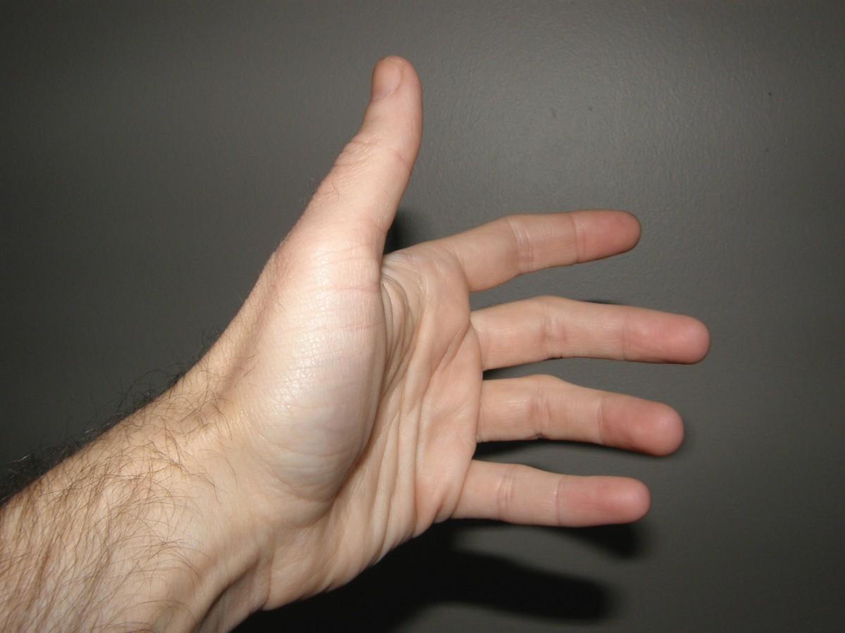 Mastürbasyon, bir canlının kendi cinsel organlarını uyararak (stimüle ederek) genellikle orgazm noktasına kadar ulaşmasına verilen isimdir.