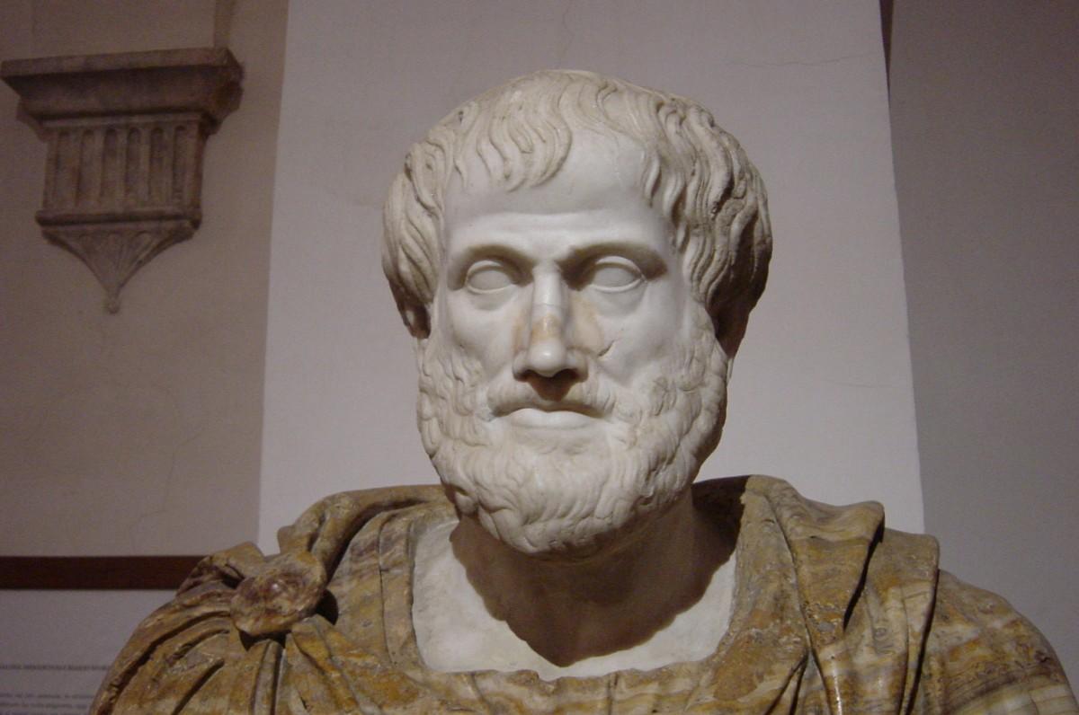 Spontane jenerasyonu sistematik olarak konu edinen ilk kişi Aristo olmuştur.