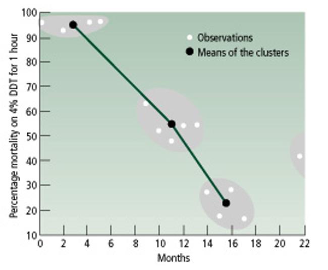 Sivrisineklerde Evrim: Ölüm oranlarında düşüş ve direnç artışı...