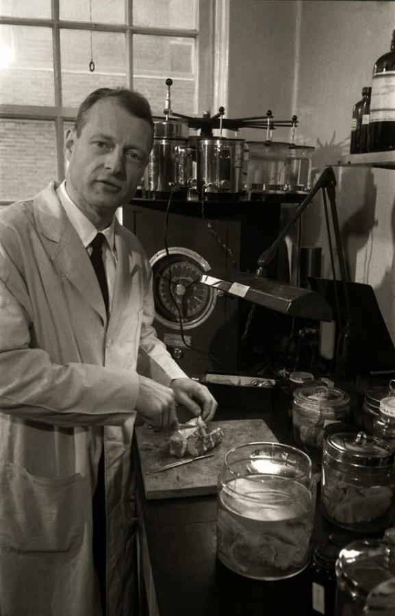 Einstein'ın otopsisini yapan Dr. Thomas Harvey. Harvey, Einstein'ın beynini çıkardı, dikkatle parçalara ayırdı ve araştırma amaçlı olarak yıllarca sakladı. Fotoğrafçının söylediğine göre şu anda Dr. Harvey'in kestiği organ Einstein'ın beyni.