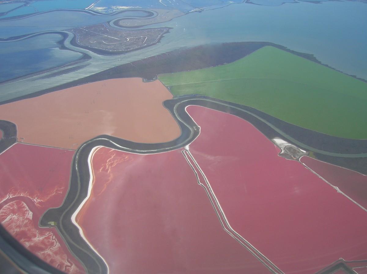 Halofilik, yani tuz sevici arkelerin ürettikleri kimyasallar nedeniyle renk değiştirmiş su birikintilerine örnekler... Bu fotoğraf San Francisco Körfezi'nden...