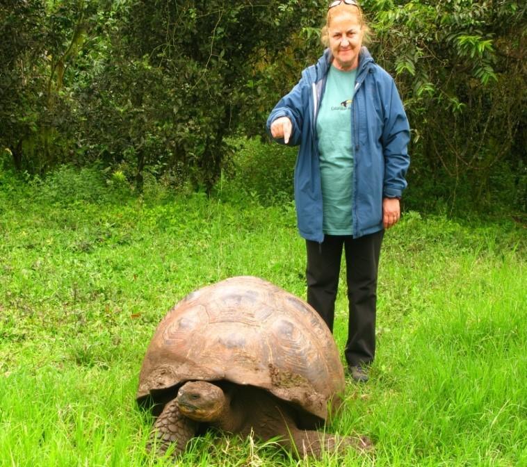 Meşhur Galapagos kaplumbağalarından birisi ile...