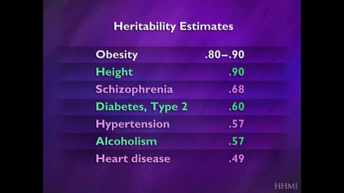 Çeşitli özelliklerin genetik olarak aktarılma oranları. Obezitenin kalıtımdaki yerini daha iyi görebilirsiniz.