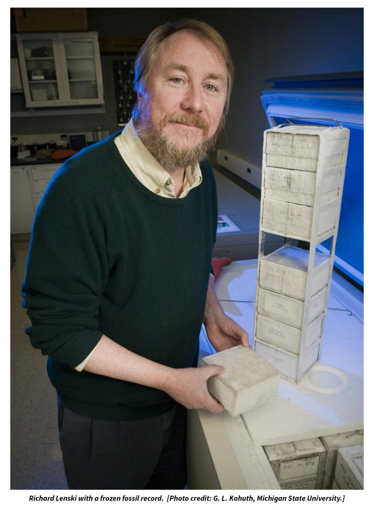 Richard Lenski dondurulmuş fosil kayıtlarını gösteriyor.