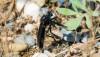 Siyah suikastçi sinek (Dasypogon sp.)