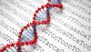 Genom Dizileme Masrafı, Moore Yasası'nın Öngördüğünden Bile Hızlı Ucuzluyor!