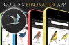 En İyi Ornitoloji (Kuş Bilimi) Telefon Uygulaması
