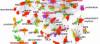 Nöropeptitler: Evrimsel Sürecin Ortak Molekülleri