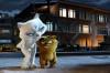 'Mart Ayı', Kediler ve Genel Olarak Memelilerde Cinsel Döngü Üzerine...