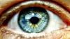 Gözün Parçaları: Göz Nasıl Çalışır?