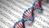 Popülasyon Genomiği