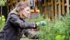 Konuşmak veya Sevmek Bitkilerin Büyümesine Katkı Sağlar mı?