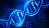XNA: Laboratuvarda Üretilen Yapay/Sentetik DNA Molekülleri ve Yapay Canlılara Adım Adım...