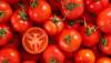 Sebze Nedir? Meyve Nedir? Domates Meyve midir?