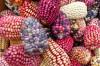 Evrim Mekanizmaları - 10: Transpozonlar
