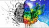 Yaratıcılığın Gerçek Sinirbilimi: Sağ ve Sol Beyin Safsatasına Artık Son Verin!