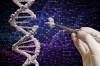 Karşılaştırmalı Genomik Bilimi