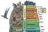 Evrimsel Süreç - 2: Evrim Tarihi'nin Büyük Zaman Çizelgesi (2. Kısım)