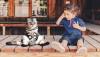 Evcil Hayvan Sahibi Olmak Çocuklar İçin Zararlı mıdır?