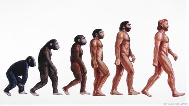 Geçmişte kullanılan örnek insan evrimi tasviri.