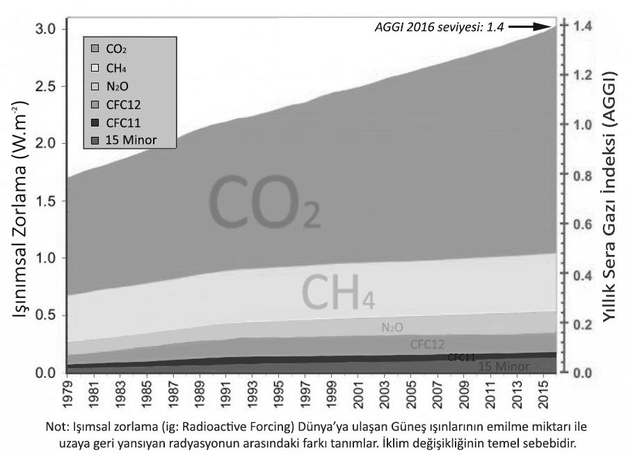 """Görsel 3: Sera gazlarının """"battaniye etkisi"""" miktarı. CO2'in atmosferi ısıtıcı etkisinin yıldan yıla artışına dikkat ediniz"""