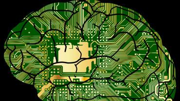 Beynimiz Çok Gelişmiş Bir Bilgisayar mı, Değil mi?