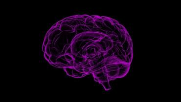 Evrimsel Değişimler, İnsanlardaki Mental Hastalıkların Sebebi Olabilir