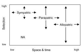 Görsel 2. Türleşmenin modelleri, gen akışına engel olan bariyerlerin oluşumundaki konum (coğrafya) ve ekolojiye (seçilim) bağlı olarak değişiklik gösterir. NA, seçilim zayıfken simpatrik türleşmenin olası olmadığını belirtmektedir.