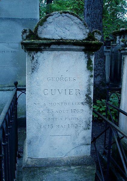 Cuvier'in Père Lachaise Mezarlığı'ndaki mezarı.