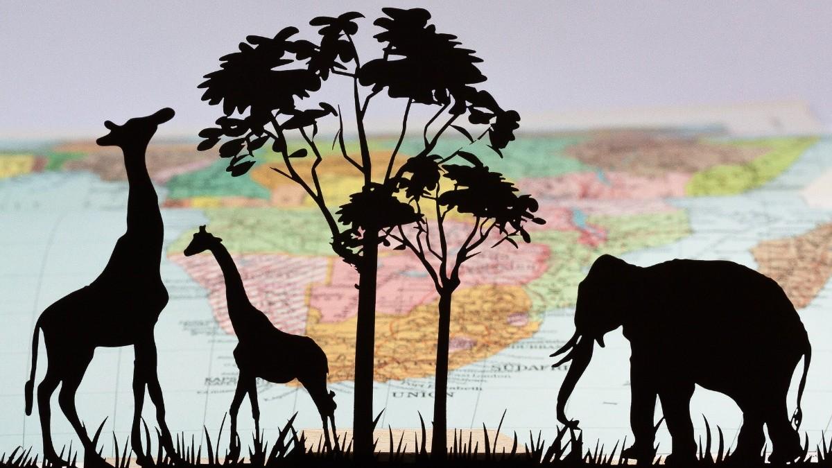Evrim Mekanizmaları 2 Doğal Seçilim Evrim Ağacı