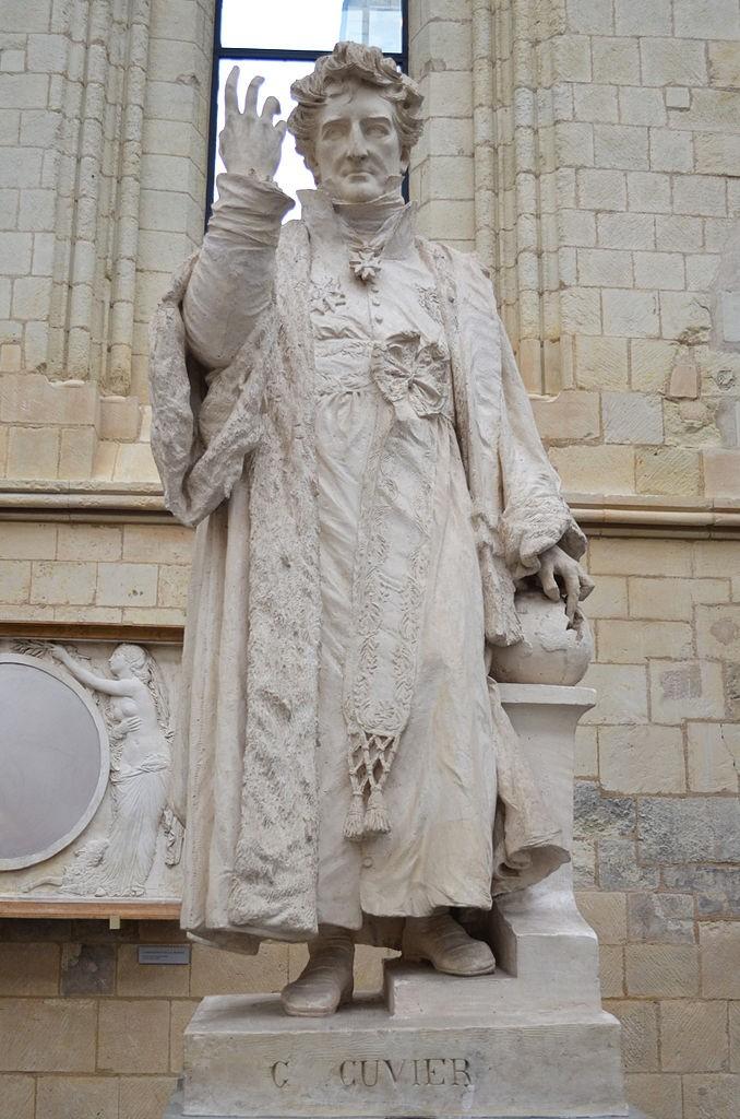 Cuvier Heykeli