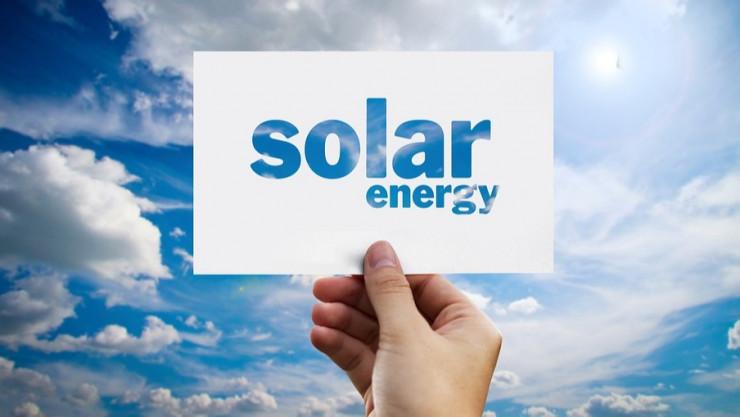 Güneş Enerjisinde Biyomimikri Örnekleri