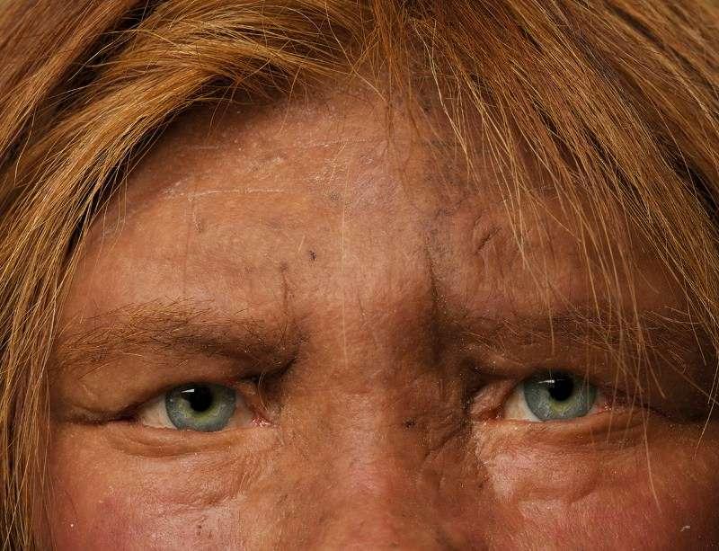 Neandertaller açık veya koyu ten rengine sahipti.