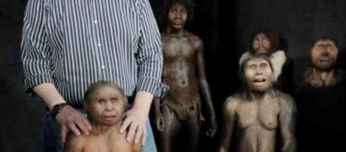 an introduction to homo floresiensis a hominid species whose remains were discovered on the island o Introduction homo habilis is a well-known, but poorly defined species the specimen that led to the naming of this species (oh 7) was discovered in 1960, by the leakey team in olduvai gorge, tanzania.