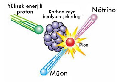 Parçacık hızlandırıcıda yüksek enerjili proton bombardımanı ile oluşturuluyor.