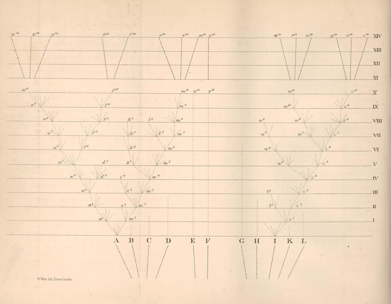 Charles Darwin'in Türlerin Kökeni kitabının 1. baskısındaki tek görsel olan yaşam ağacı taslağı