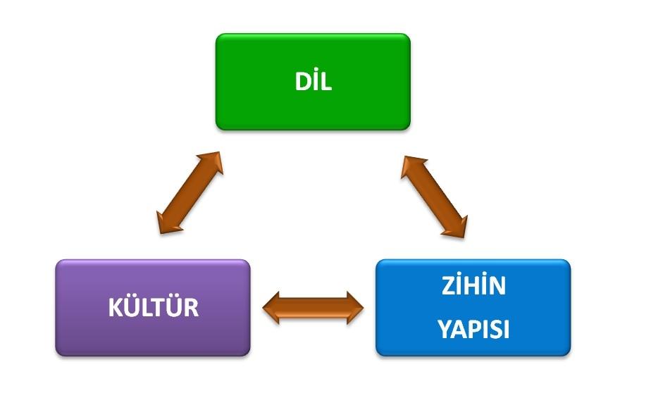 Dil, kültür ve zihin yapısı arasındaki etkileşimi gösteren şema
